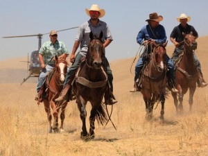 Scene from Wild Horses